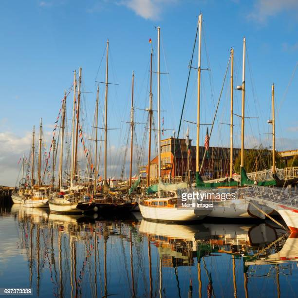 Sailboats at pier