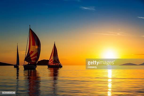 Sailboats formation at sunset