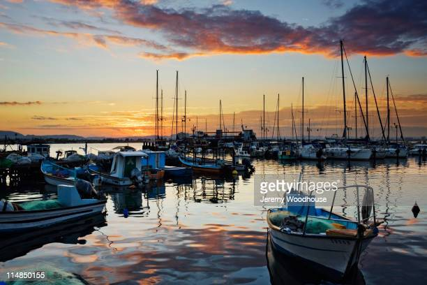 Sailboats moored in marina at sunset