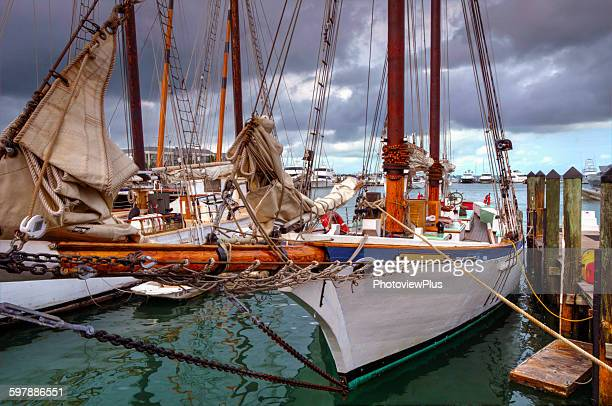 Sailboats Morred at Key West