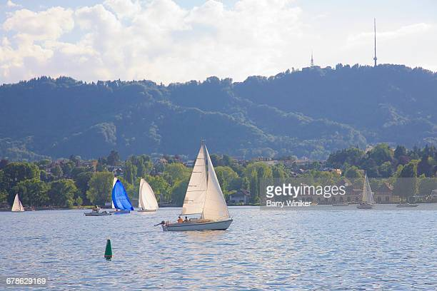 Sailboats on Lake Zurich in summer