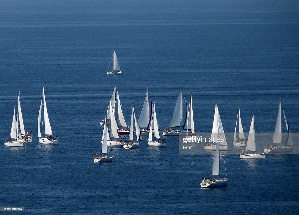 Sailboats : Stock Photo