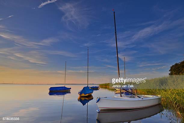 Sailing boats and reed