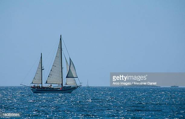 Sailing Ship on the Adriatic Sea, near Rovinj, Istria, Croatia