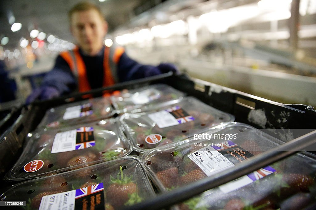 Sainsbury's colleague prepares to meet demand of British strawberries for the weekend at the Sainsbury's infrastructure at Waltham Point Depot on August 22, 2013 in Waltham Abbey, England.