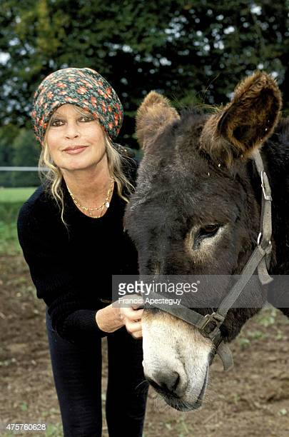 Saint Aubin le Guichard France October 1998 French actress and animal rights activist Brigitte Bardot at the Mare Auzou animal refuge in the French...
