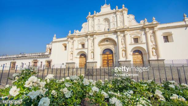 Saint Joseph Cathedral or Catedral de San José in front of flowers, Antigua Guatemala