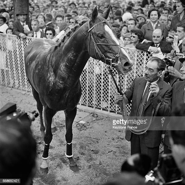 SaintCrespin le cheval ayant remporté la course hippique à Longchamp à Paris France le 4 octobre 1959