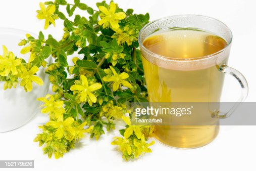Saint-Johns wort tea : Stock Photo