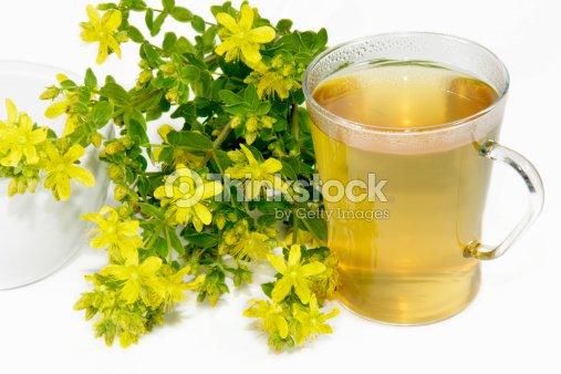 Saint-Johns wort tea : Stock Photo