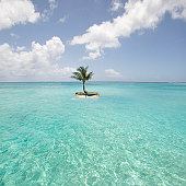 Saipan, Small island with palm tree in sea