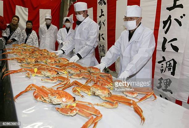 Sakai Japan Prized Echizen crabs a winter delicacy caught in the Sea of Japan are boiled and prepared in Sakai Fukui Prefecture central Japan on Feb...
