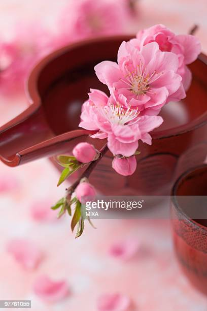 Sake cup and peach blossoms