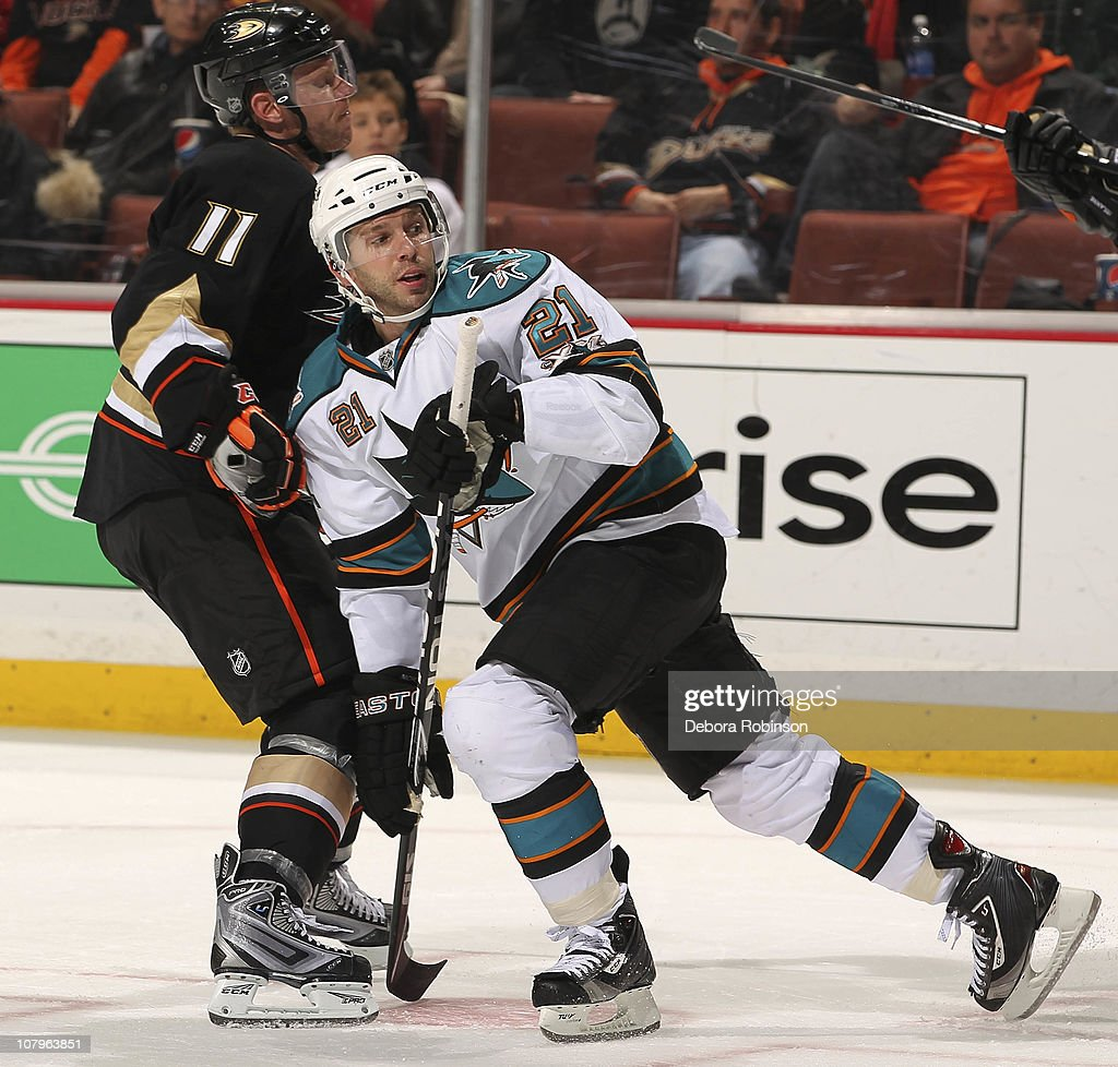 Saku Koivu of the Anaheim Ducks collides with Scott Nichol of the San Jose Sharks during the game on January 9 2011 at Honda Center in Anaheim...