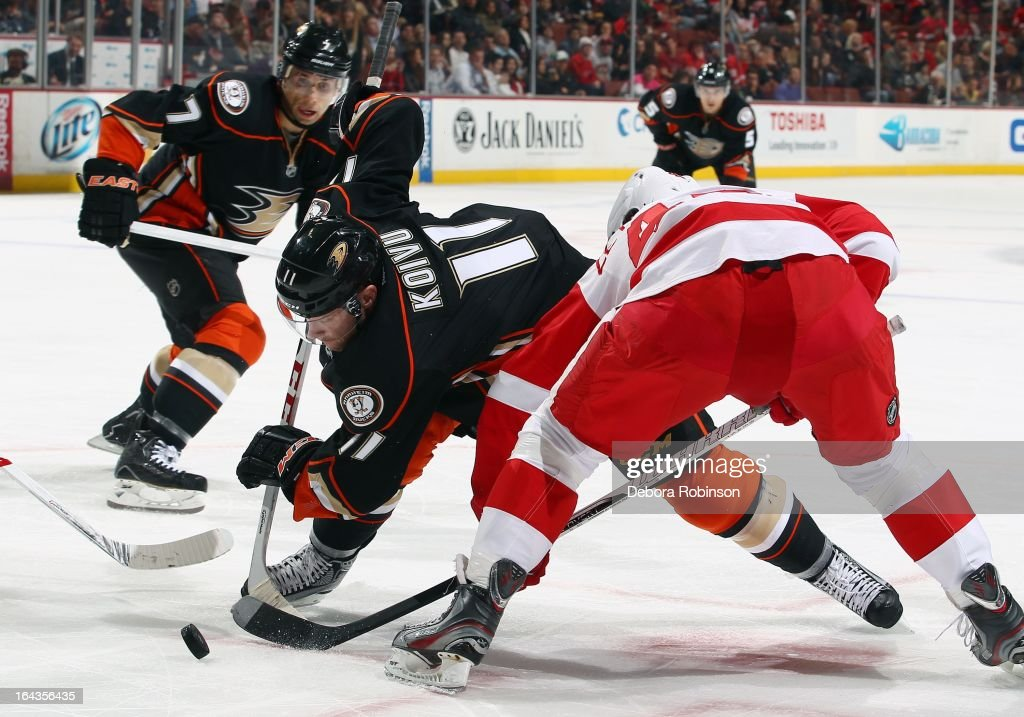 Saku Koivu #11 of the Anaheim Ducks digs for the puck against Henrik Zetterberg #40 while teammates Andrew Cogliano #7 and Luca Sbisa #5 of the Anaheim Duycks look on. March 22, 2013 at Honda Center in Anaheim, California.