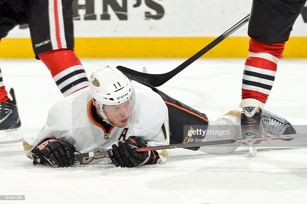 <a gi-track='captionPersonalityLinkClicked' href=/galleries/search?phrase=Saku+Koivu&family=editorial&specificpeople=202253 ng-click='$event.stopPropagation()'>Saku Koivu</a> #11 of the Anaheim Ducks lays on the ice after taking a fall during the NHL game against the Chicago Blackhawks on March 29, 2013 at the United Center in Chicago, Illinois.