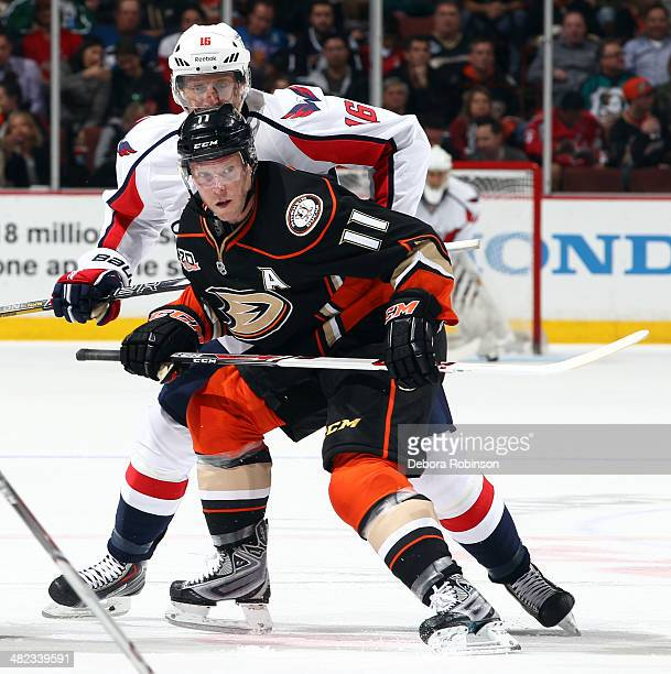Saku Koivu of the Anaheim Ducks skates against Eric Fehr of the Washington Capitals on March 18 2014 at Honda Center in Anaheim California