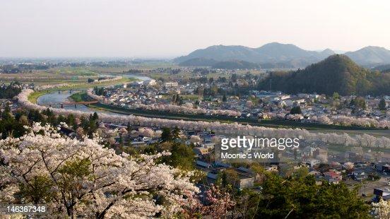 Sakura lined riverbank of Kakunodate