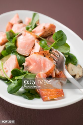 Salad leaves with fried salmon and mushrooms, close up : Stock Photo