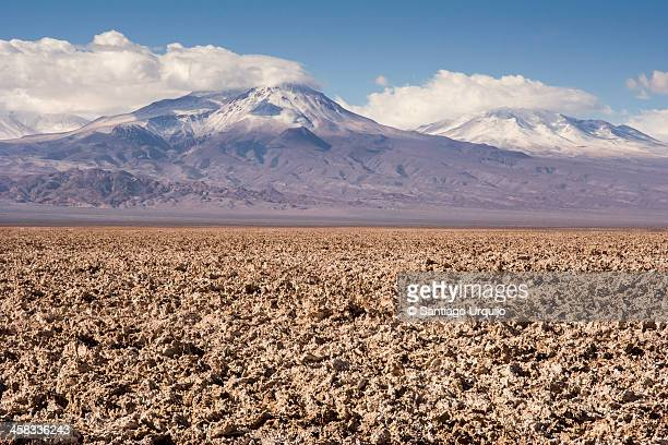 Salar de Atacama with snow-capped volcanoes