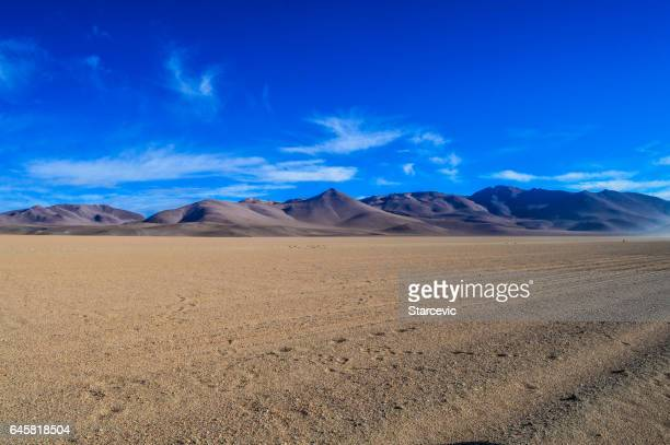 ボリビアのウユニ ウユニ塩原
