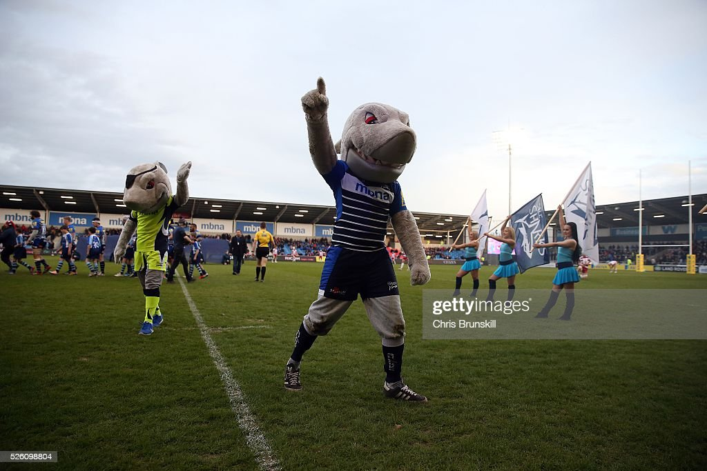 Sale Sharks mascots encourage the crowd ahead of the Aviva Premiership match between Sale Sharks and Gloucester Rugby at the AJ Bell Stadium on April 29, 2016 in Salford, England.
