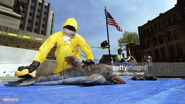 Salem Harry a student at Bowdoin College in Brunswick pretends to scrub oil off a stuffed animal dolphin during a mock oil spill in Monument Square...