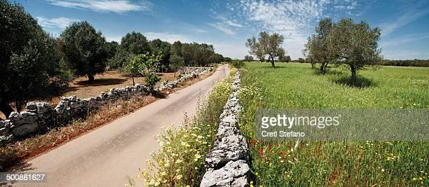 Salento road