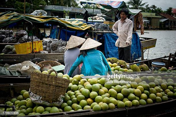 CONTENT] Saleswomen from Can Tho floating market on Mekong Delta This southern region of Vietnam is popular tourist destinations of the country...