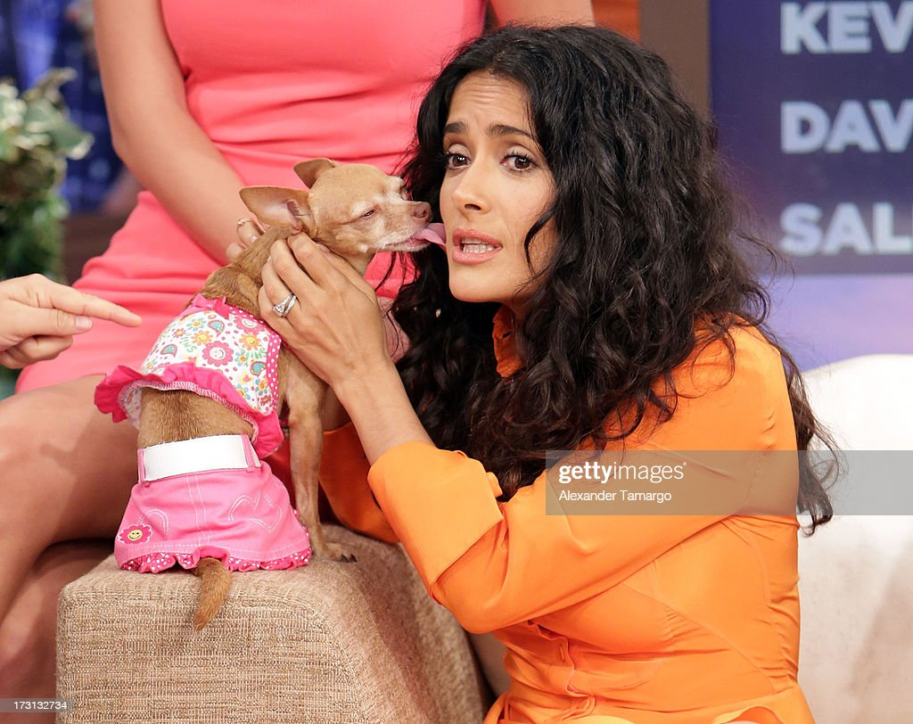 <a gi-track='captionPersonalityLinkClicked' href=/galleries/search?phrase=Salma+Hayek&family=editorial&specificpeople=201844 ng-click='$event.stopPropagation()'>Salma Hayek</a> of 'Grown Ups 2' cast appears on Univision's 'Despierta America' to promote the movie at Univision Headquarters on July 8, 2013 in Miami, Florida.