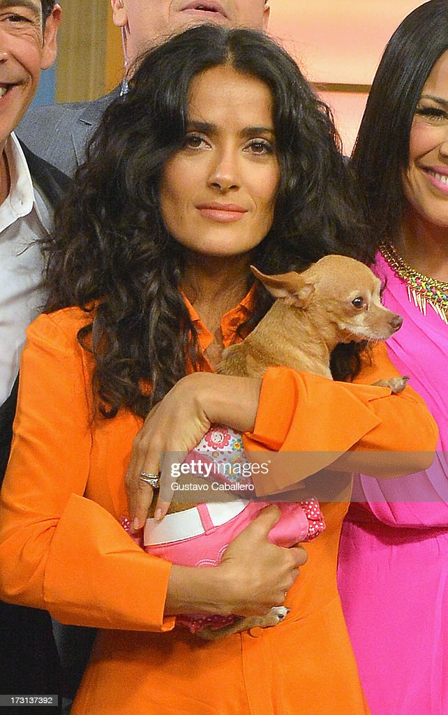 <a gi-track='captionPersonalityLinkClicked' href=/galleries/search?phrase=Salma+Hayek&family=editorial&specificpeople=201844 ng-click='$event.stopPropagation()'>Salma Hayek</a> of 'Grown Ups 2' cast appears on Univisions 'Despierta America' to promote the movie at Univision Headquarters on July 8, 2013 in Miami, Florida.