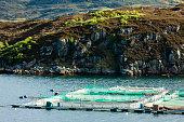 salmon farm, Loch a Chairn Bhain, Highlands, Scotlandsalmon farm at Drumbeg, Highlands, Scotland