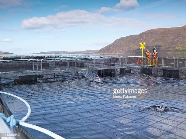 Salmon farmers standing by pen of Scottish salmon farm