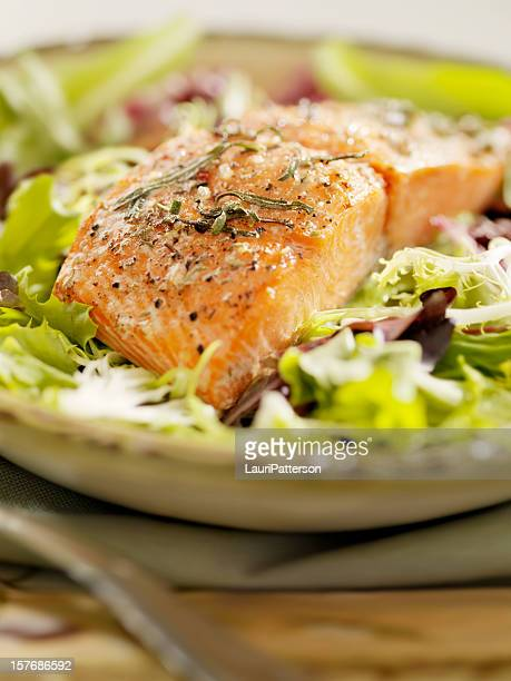 Salmon Filet on a Bed Of Fresh Salad