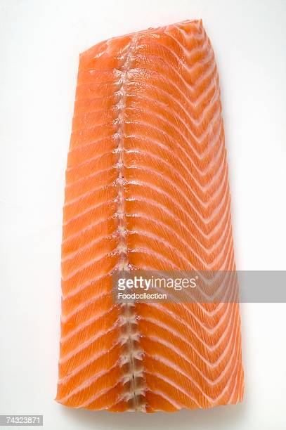 Salmon fillet (overhead view)