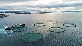 Salmon fish farm. Bergen, Norway.