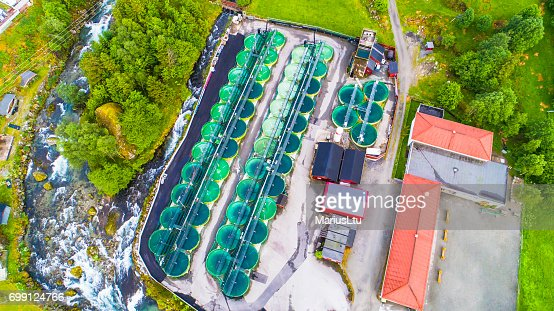 Salmon fish farm. Norway : Stock Photo