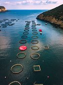 Salmon fish farm with floating cages in Greece. Aerial view
