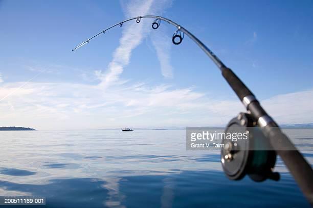 Salmon fishing rod bending