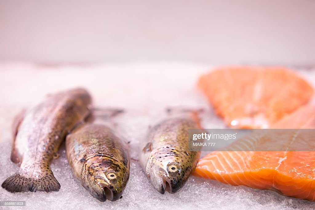 Salmon on ice, waiting to be sold, in market stall