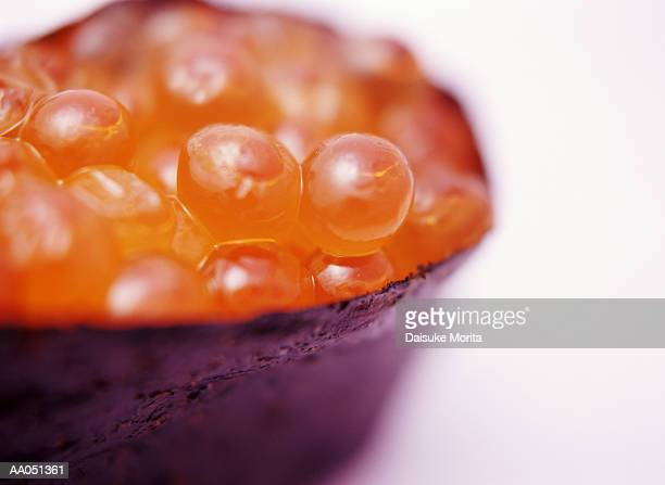 Salmon roe, close up