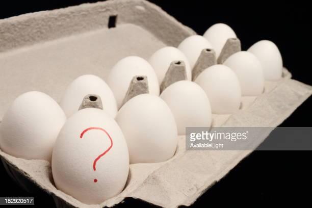 Salmonella Eggs Horizontal