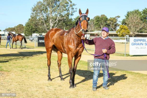 Sals Reward after winning the Coopers Hire Drive FM Maiden Plate at Bairnsdale Racecourse on July 25 2017 in Bairnsdale Australia