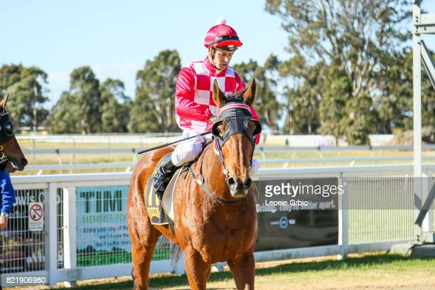 Sals Reward ridden by Chris Symons returns after winning the Coopers Hire Drive FM Maiden Plate at Bairnsdale Racecourse on July 25 2017 in...