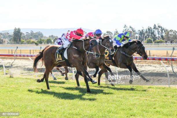 Sals Reward ridden by Chris Symons wins the Coopers Hire Drive FM Maiden Plate at Bairnsdale Racecourse on July 25 2017 in Bairnsdale Australia
