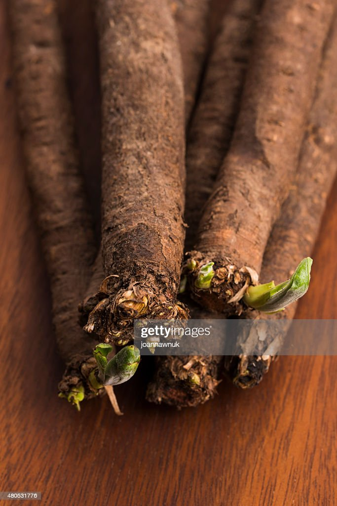 salsify vegetables on wood : Stockfoto