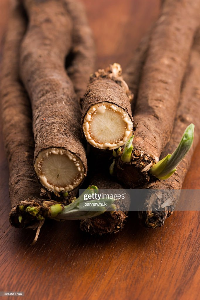 salsify vegetables on wood : Bildbanksbilder