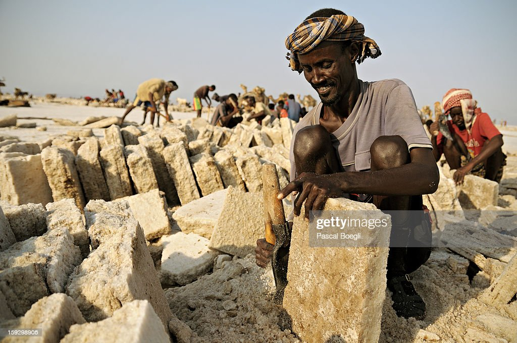 CONTENT] Salt extraction on the lake Karum (lake Assal), -115m below sea level. The salt is loaded on camels (100-120 kg) and then transported on the Ethiopian highlands to be sold. Danakil desert, Ethiopia