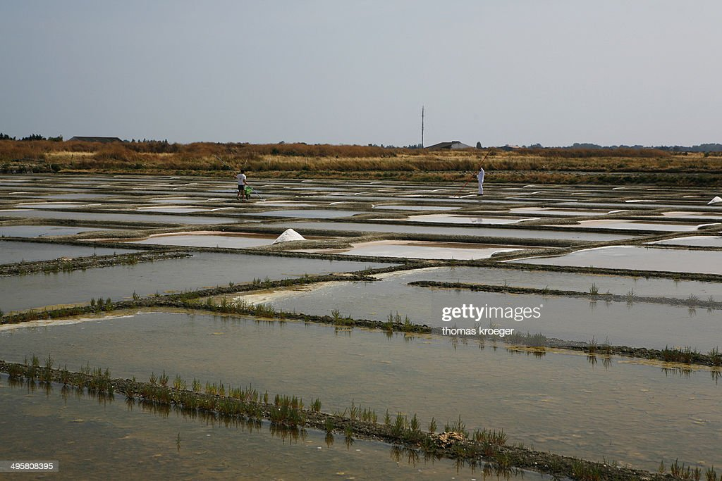 salt farm noirmoutierenlile ile de noirmoutier pays de la loire france stock photo getty images. Black Bedroom Furniture Sets. Home Design Ideas