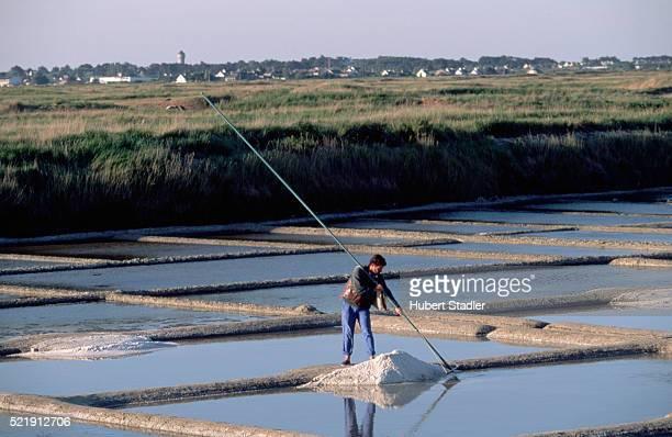 Salt Flats near Guerande